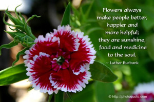 Flowers always make people better, happier, and more helpful; they are ...