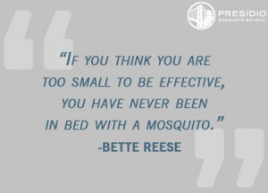 ... you have never in bed with a mosquito.