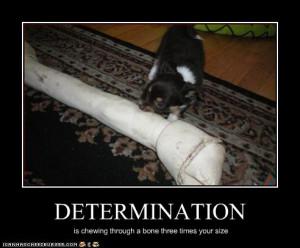 Funny Determination Quotes