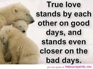 true-love-quote-cute-polarbear-picture-pics-lovely-quotes.jpg
