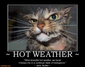 HOT WEATHER ~ -