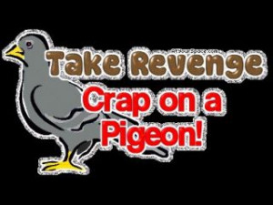 Top 7 Funny Random Sayings Pictures