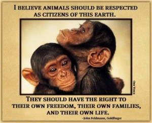 Ethical treatment of all animals