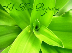 ... new beginning but anyone can start today and make a new ending maria