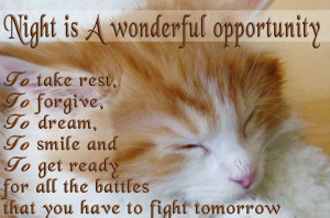 Good Night Cat Wallpaper With Quote Image