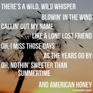 Canvas, Lyrics American Honey, Favorite Songs, Country Lyrics Quotes ...