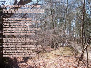 Social Worker Poem Rogan wolf poet and social