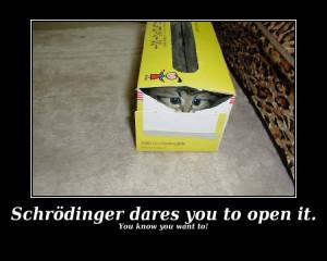 Schrodinger's Cat -Kill the Kitty,