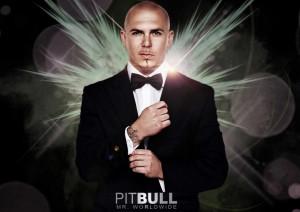 Details about PITBULL RAPPER Armando Christian Perez Photo Poster ...