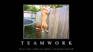 Back > Quotes For > Teamwork Quotes With Images