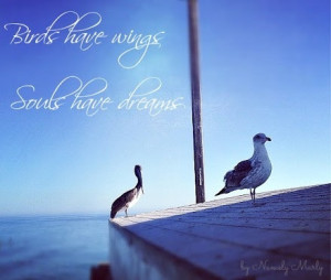 Birds have wings; Souls have dreams. #Quotes #Picturequotes
