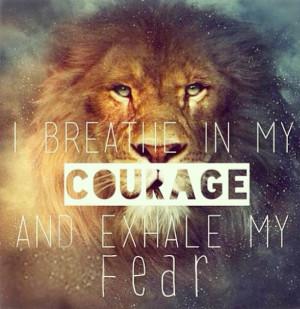 Lion Quotes Lion Strength Quotes Lion