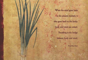 Thich Nhat Hanh #quote #mindfulness