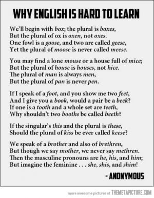 Funny photos funny english language rhyme poetry