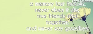 largest friendship quotes about sense that friendship goodbye quotes ...