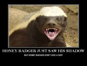 Honey Badger Saw His Shadow