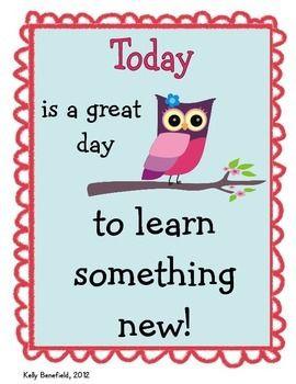 OWL THEMED MOTIVATIONAL POSTER SET - TeachersPayTeachers.com