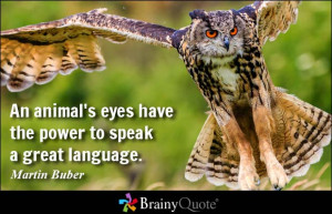 An animal's eyes have the power to speak a great language. - Martin ...