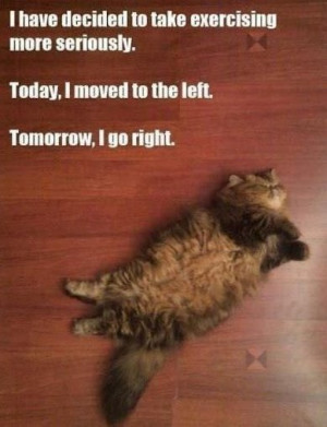 Funny-exercise-meme-quotes-laughing-time-have-fun-hilarious-photos-OMG ...