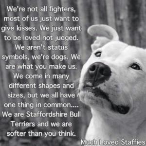 Pitbull Love Quotes | love my pit bull