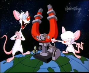 FIFI MEETS PINKY AND THE BRAIN