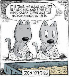 HUMOR - ZEN CATS