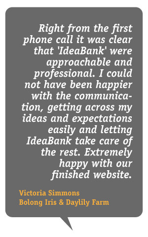 About IdeaBank