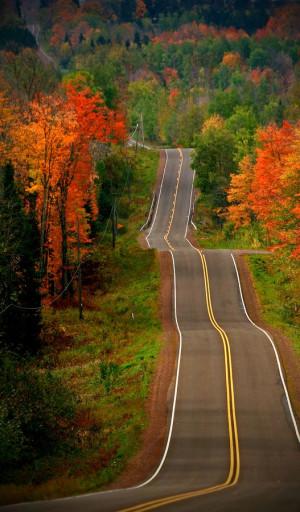 Roads, Country Roads, Back Roads, New England, Autumn, Open Roads ...