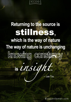 Lao Tzu quotes Returning to the source is stillness which is the