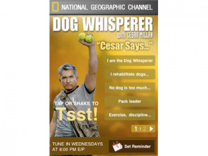 Carry Cesar Millan quotes in your pocket!