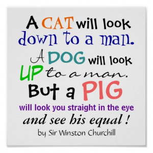 pig_quote_by_sir_winston_churchill_poster ...