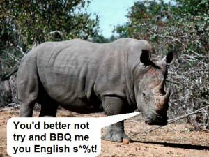 rhino-funny-animal-parody-bbq-adopt-man