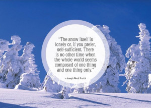 inspirational snow quotes15 inspirational snow quotes17