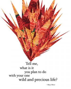 ... to do with your one wild... | Mary Oliver Picture Quotes | Quoteswave