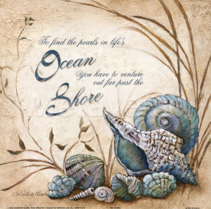 seashell quotes