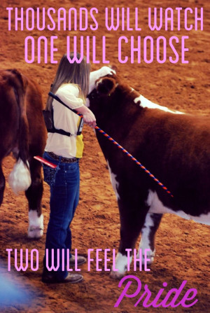 Showing Sheep Quotes, Show Cattle Quotes Cows, Livestock Show Quotes ...
