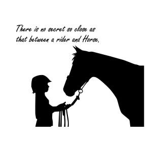 Funny Horse Quotes Child quote-horse quote