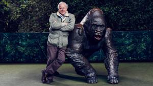 David-Attenboroughs-Natural-Curiosities-S02-03-16x9-1.jpg