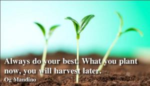 Og Mandino quotes