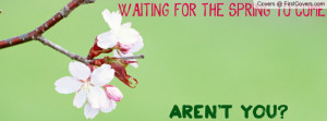 WAITING FOR THE SPRING Profile Facebook Covers