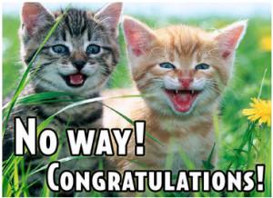 wedding congratulations card congratulations graduate congratulations ...