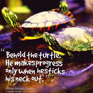 Quotes Picture: behold the turtle he makes progress only when he ...