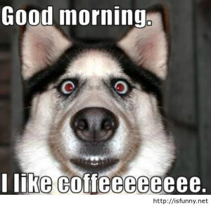 Funny Good Morning Quotes (8)