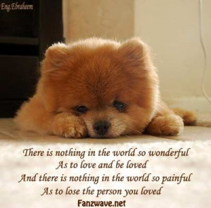 Good Bye Quotes For Dogs | sad quotes about life and love. quotes ...