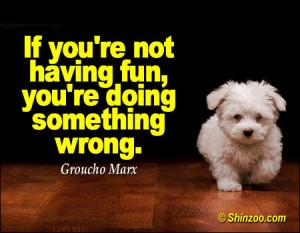 """If you're not having fun, you're doing something wrong."""""""