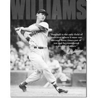 Ted Williams Quote Tin Sign
