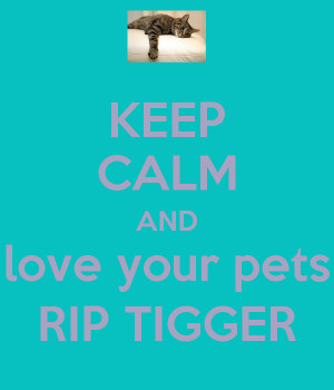 KEEP CALM AND love your pets RIP TIGGER