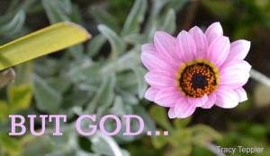 God Is My Strength Quotes Renew my strength. but god