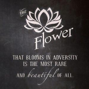mulan #adversity #inspiration #love #beautiful #quote #disneyquote