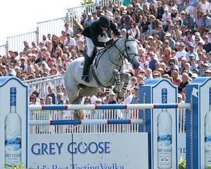 Horse Racing Photos - Show Jumping - Common show jumping tack: jumping ...